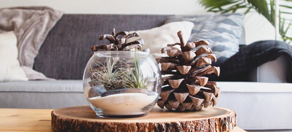 Tendencias veraniegas para la decoraci n del hogar for Decoracion hogar tendencias