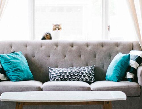 Tips para conseguir una iluminación natural en casa