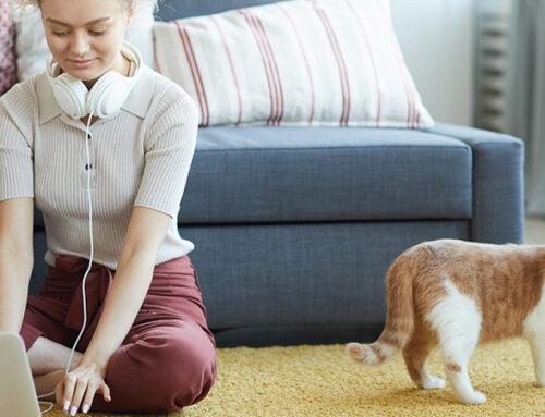 Consiga un espacio de ocio en el hogar