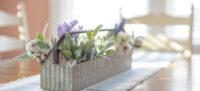 primavera en el hogar